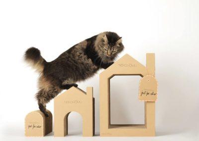 Nekohomu Cats