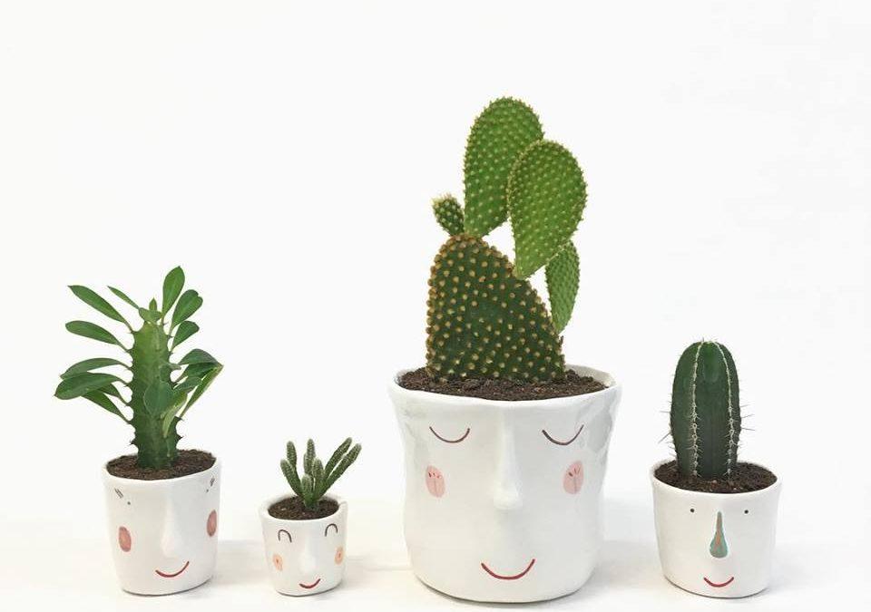 Pompilio Plants